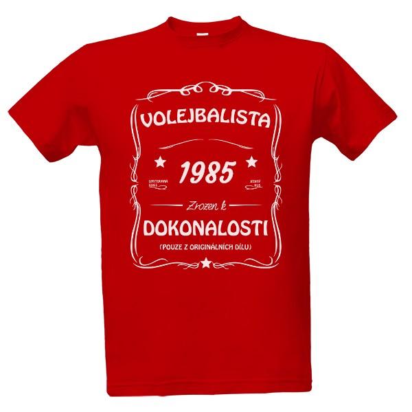 fe7445bc54c Tričko s potiskem Volejbalista - narozeniny